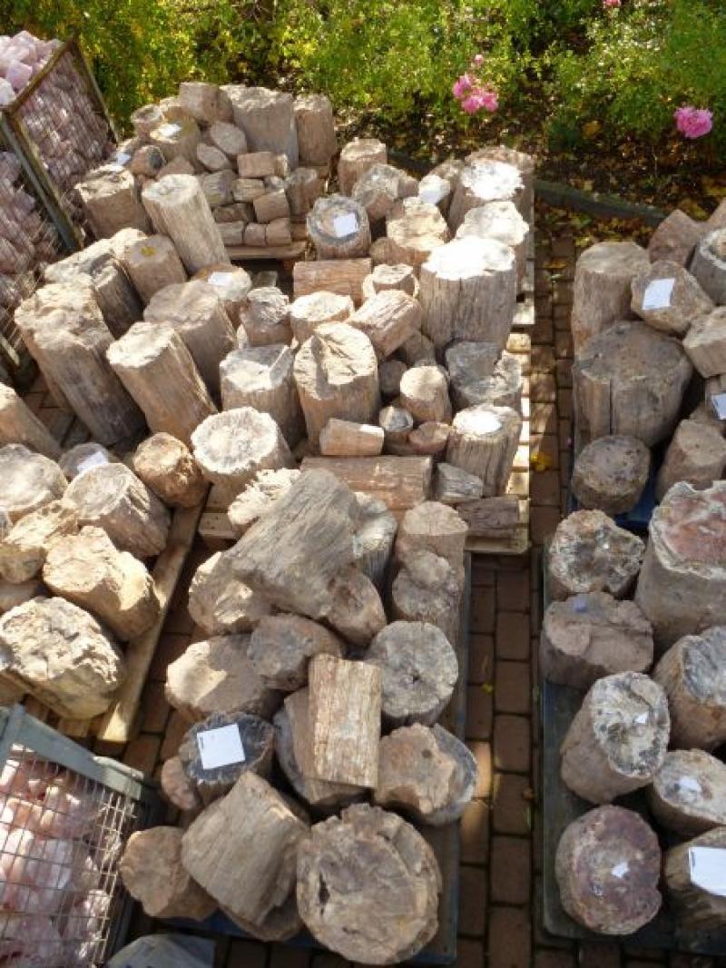 Petrified wood, one side saw cut, Madagascar, 100 kg