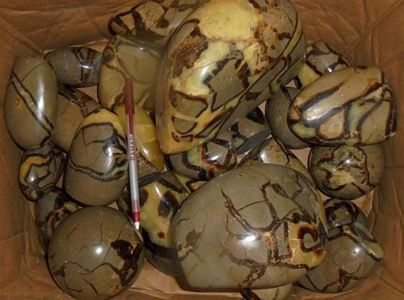 Septaria, polished, Madagascar, 10 kg