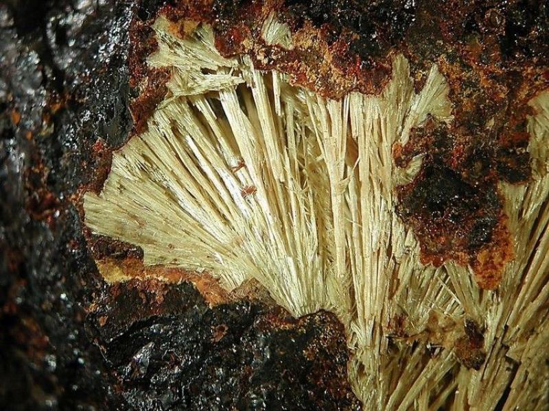 Allanpringite (xx); Grube Mark, Taunus, D.; KS