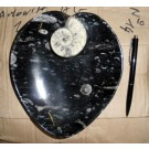 Ammonite plate, hart shape, black, 20 cm, 1 piece