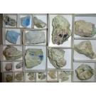 Junitoite xx, Kinoite xx and Sauconite, Christmas Mine, AZ, USA (TYP) 1 flat