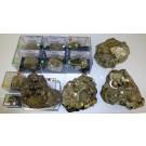 Pyrite xx, Peru, 1 lot of 12 cabinet size, top end specimen