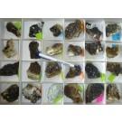 Andradite (Topazolite) xx; Stanley Butte, AZ, USA; NS
