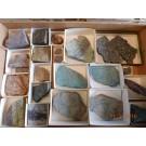 Sliced ore & rock collection, New Cornelia Mine, AZ, USA, 1 flat