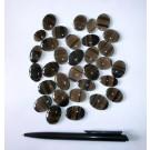 Midnight Lace Obsidian, Cabochon, cats eye, 20-30 mm, Armenia