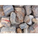 Petrified (fossil) Wood, Kiesgrube Sermuth bei Gnandstein, Sachsen, D., 1 kg