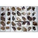 Amethyst-sceleton X/xx, Brandberg, Namibia, 1 flat with 35 pieces