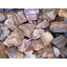 Petrified wood, smaller pieces, Madagascar, 1 kg