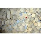 Sea urchin, flat, round, Morocco, 100 piece