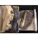 Belgian Whetstone Combination, Coticule, Bihain, Ardenne Mtns., Belgium, rough chunk; HS