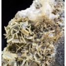 Microcline xx, Aris, Windhoek, Namibia; 1 lot of 40 specimen, large flat