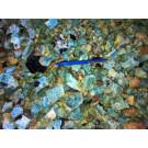 Beryl (aquamarine), Erongo, Namibia, 100 g