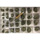 Pyrite crystals on matrix, Huanzala Mine, Huallanca, Peru, 1 flat
