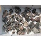 Uraninite (Pitchblende), Pribram, CZ, 50 Min. - Scab.