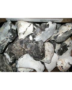 Flintstone (Firestone, black), Heiligendamm, Bad Doberan, Baltic Sea, Germany, 1 kg
