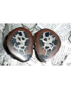Septaria-pairs (polished) about 2-3 cm, Morocco, 1 pair