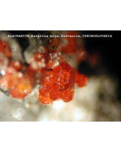 Alacranite xx; Katharina Mine, Radvanice, CZ; MM