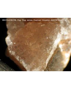 Whitlockite xx/(xx); Palermo Mine, North Groton, Grafton Co., NH, USA; MM