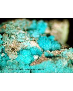 Yvonite xx; Salsigne Gold Mine, Aude, F; MM
