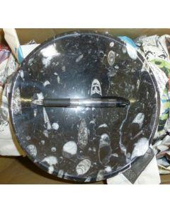Orthoceras bowl, round, black, app. 20 cm, 1 piece
