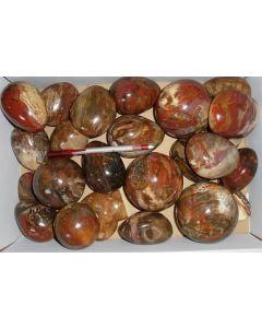 Petrified wood, polished, Madagascar, 1 kg