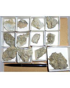 Nifontovite X/(xx), Charcas Mines, SLP, Mexico, 1 microbag