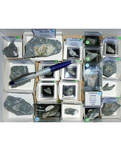 Aris, Windhoek, Namibia; small collection of well identified specimen; 1 lot of 22 specimen