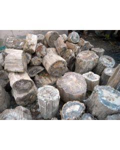 Petrified wood, one side saw cut, Madagascar, 35 kg