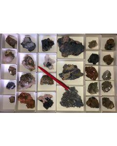 Galena, Pyrite, Arsenopyrite, Calcite, Rhodochrosite etc. sulphide crystals on matrix, Trepca, Kosovo, 1 flat with 26 specimen