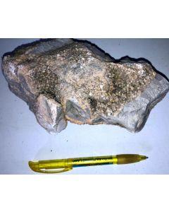 Calcite xx; Fredriksberg, Sweden; HS