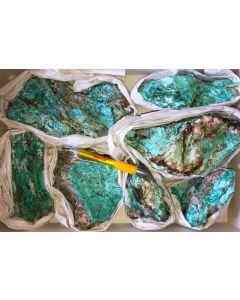 Serpierit, Namuwit, Ktenasit, Spangolit xx, Serpieri Mine, Laurion, Greece, 1 large flat