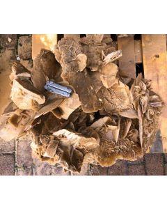 Desert roses, Tunesia, museum piece #5 (app. 140 kg)
